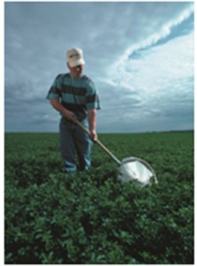 Understanding Integrated Pest Management
