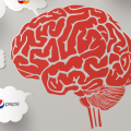 Marketing and Neurosciences: Advertising has to be emotional and connect with the brand