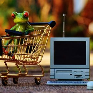 Building an Online Shop on My Website?